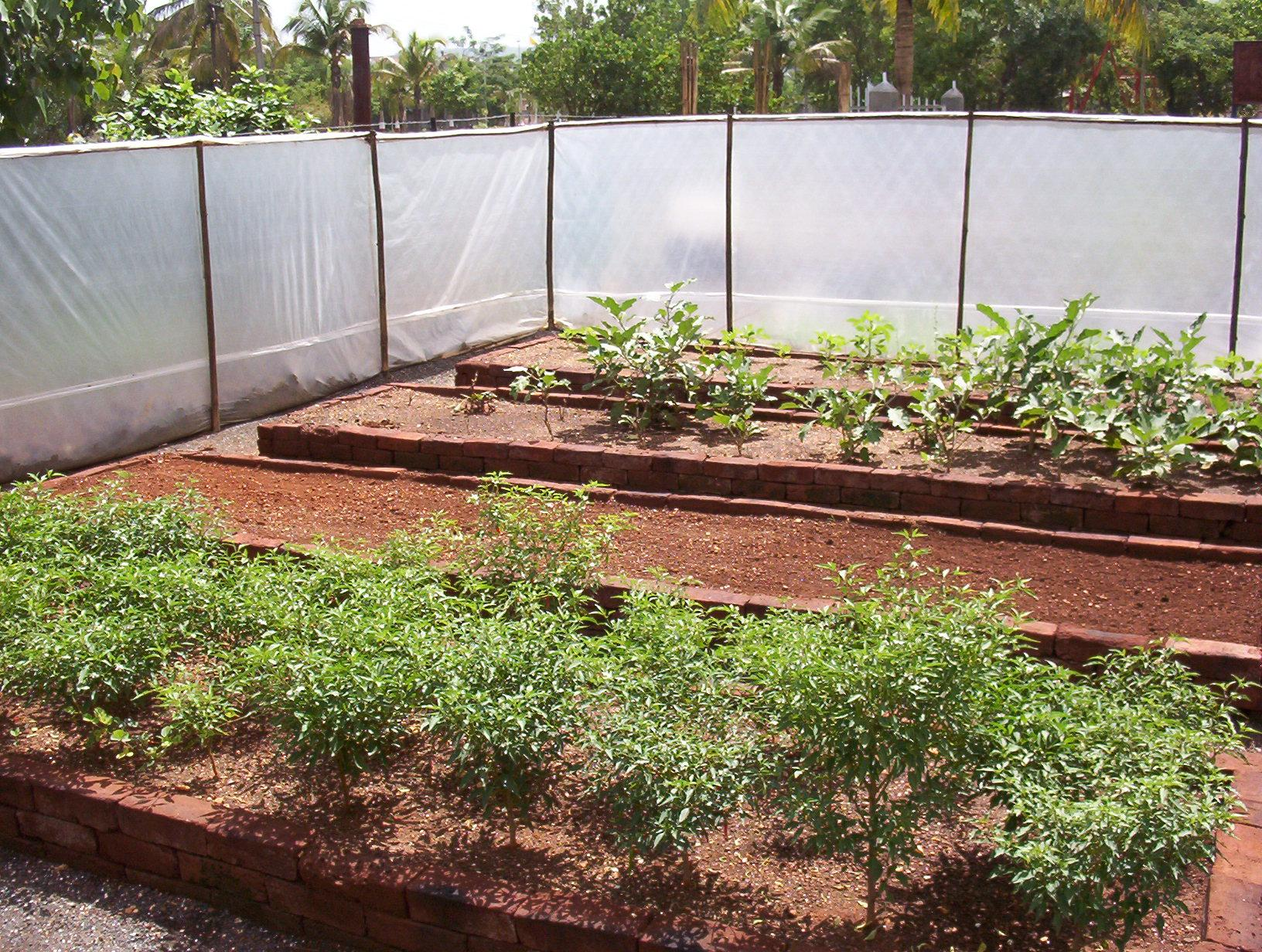 Farming on permanent raised beds