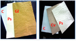 Hand made paper from alternate sources of fiber ( Biopulping and Biobleaching)