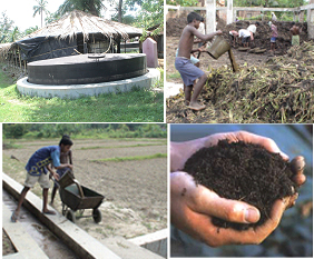 A model for integrated biogas production with vermicomposting